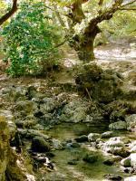 Ostrov Rhodos a příroda